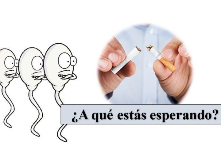 Efecto del tabaco sobre la calidad espermática