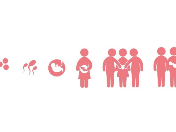 The legalaspects ofsurrogacy