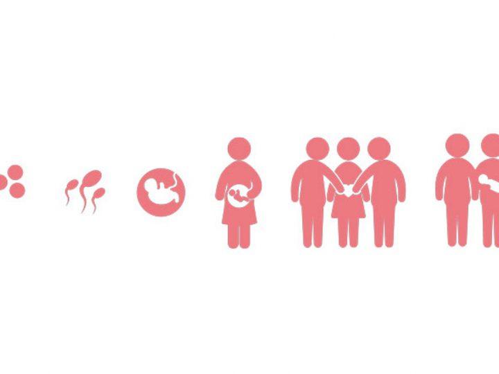 Légalité de la maternité de substitution